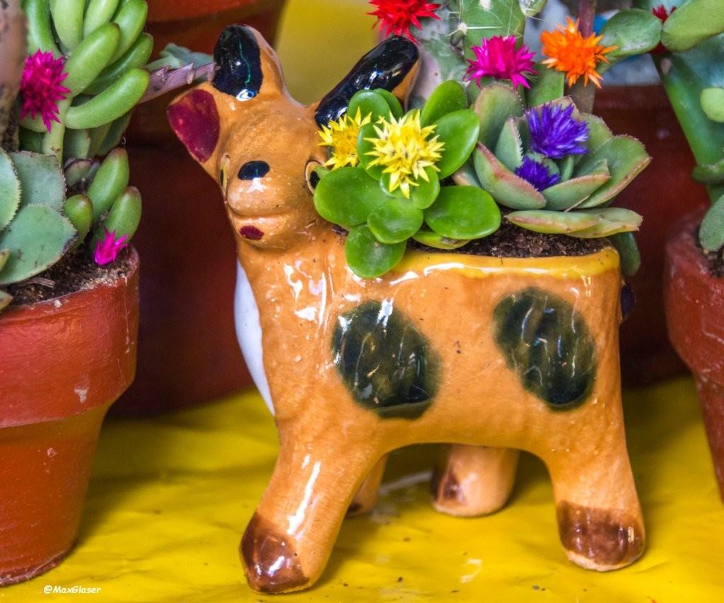 Miniaturas - La cabrita y su Cactus