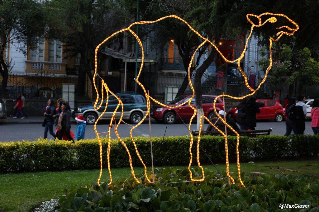 Camello luminoso en el Prado
